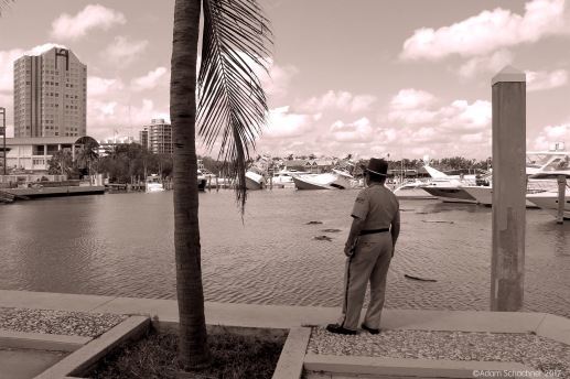 After Irma Bayshore Drive, Coconut Grove